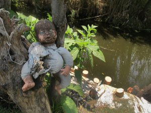 "Dolls on some of the ""chinampas"" (artificial islands) located in Xochimilco. Originally intended to protect from evil spirits, they are now a tourist attraction."